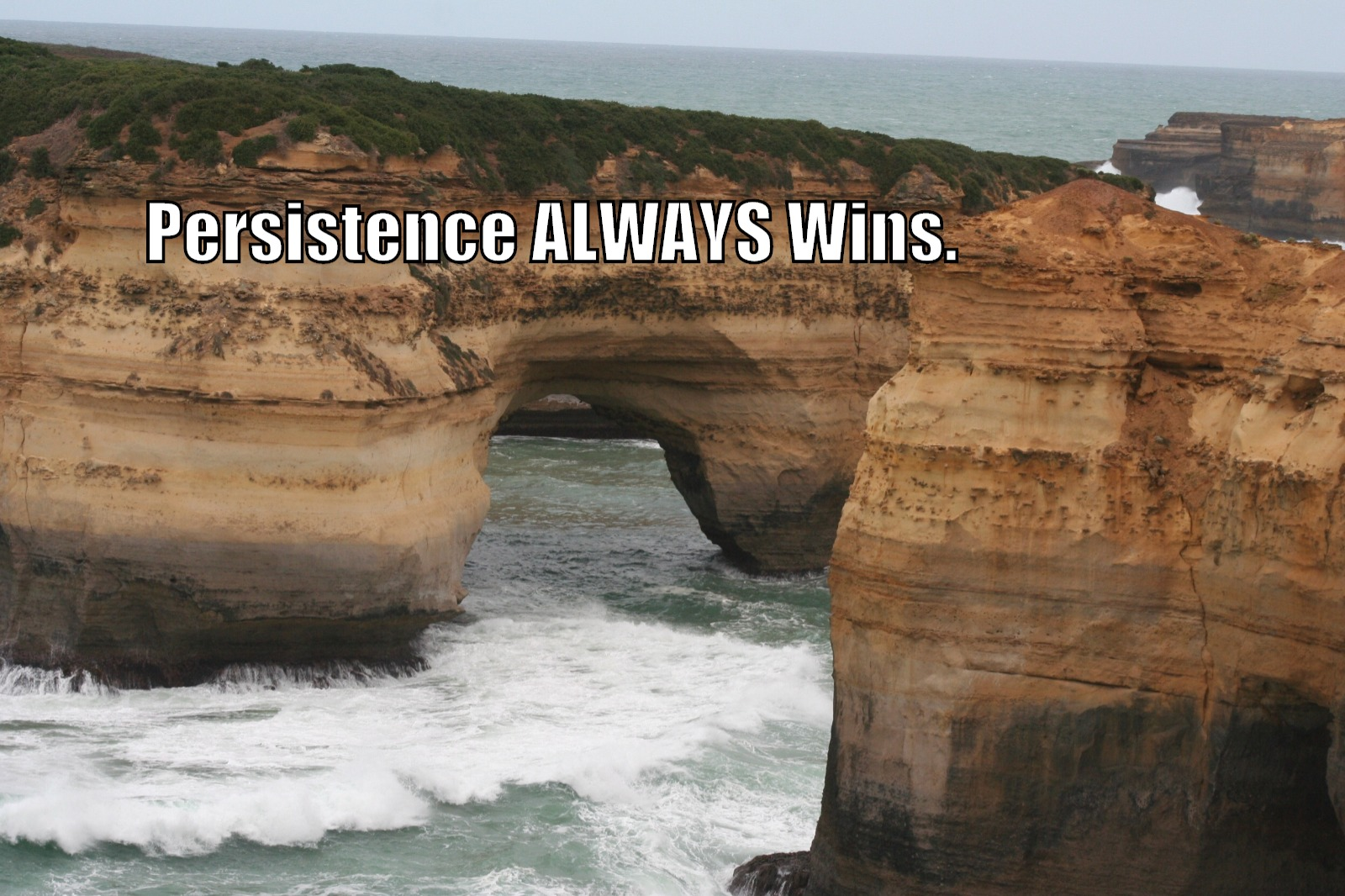 Motivational quote: Persistence always wins.